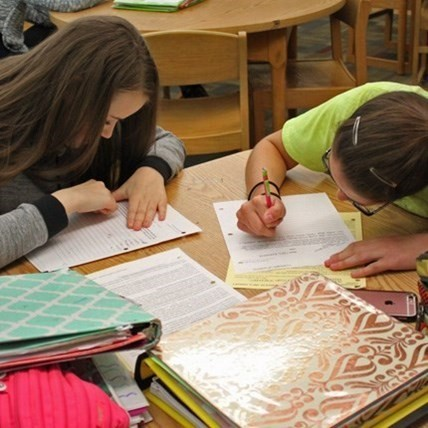Two Jr./Sr. HS girl students working in the library.
